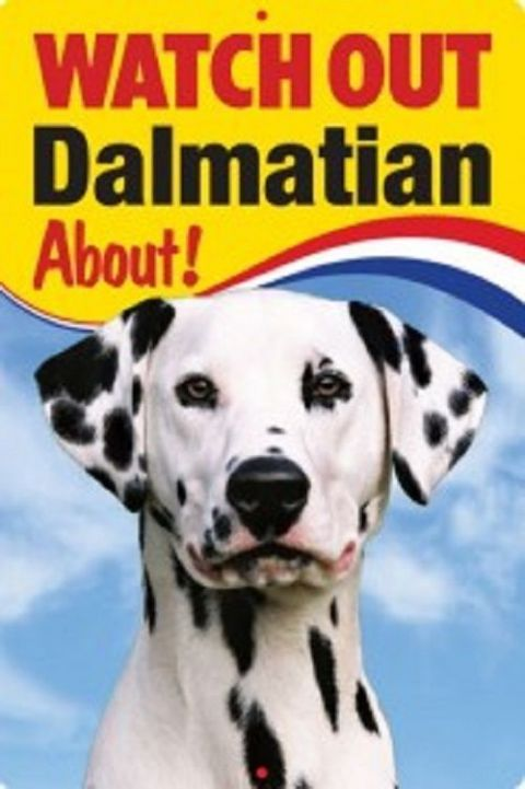 DALMATION 3D  DOG SIGN